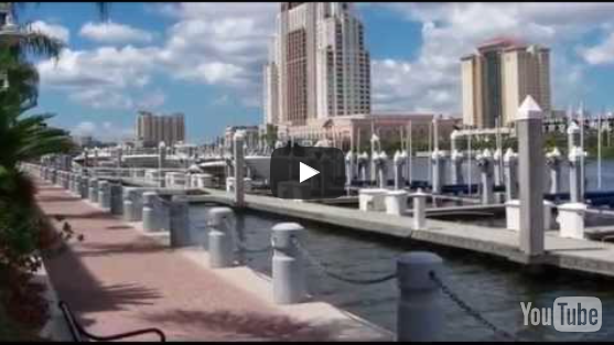 Tampa City Travel Guide